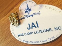 One Year at Disney